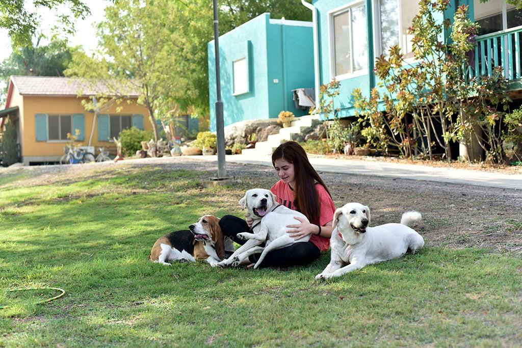 אישה ו3 כלבים על הדשא