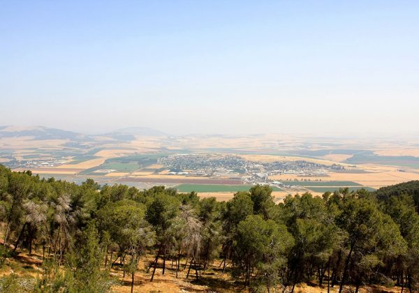 Gilboa Scenic Road